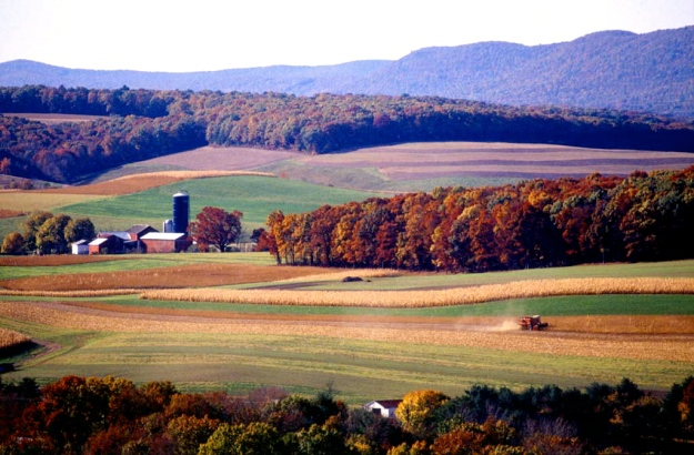 landfarm