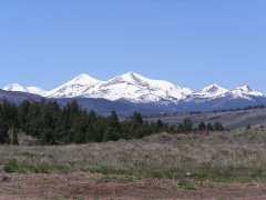 Tzoodzil - Mt. Taylor, NM.