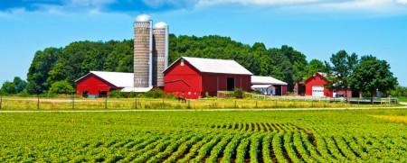 farmm